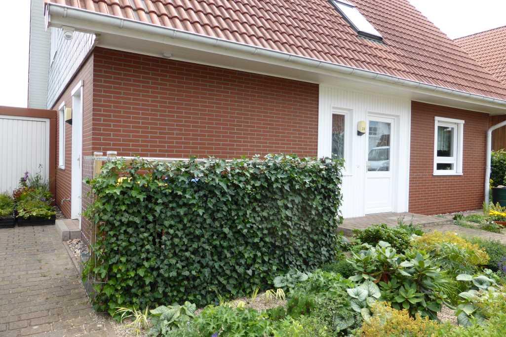 Galerie Vorgarten Alfg Atelier Landschaft Freiraum Garten